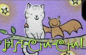 batcat photoop2