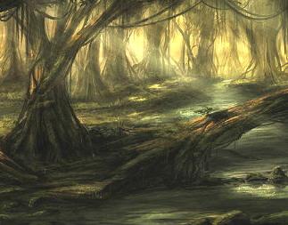 swampe
