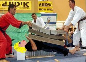 karatemaster