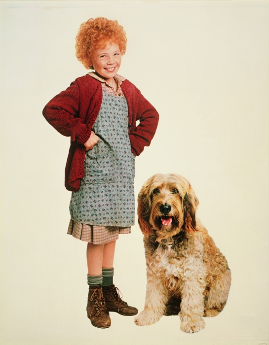 Comparsion Between the Movie Annie to the Great Drepression