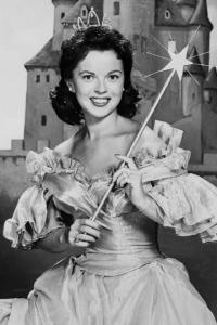 Shirley fairy